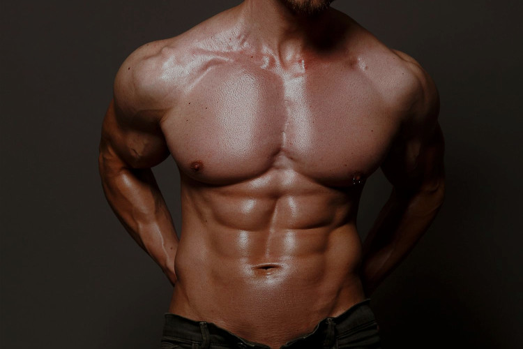 sexy cut male body and six pack abs