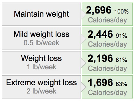 weight loss calories example 2